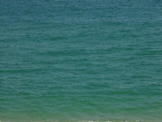 Medano Beach the Best in Cabo San Lucas